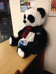Paley Library Media Services Bear