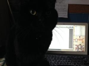 Mo Magee and writing