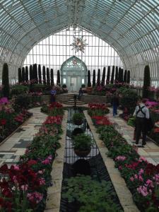 Como Park Conservatory, St, Paul, Minnesota